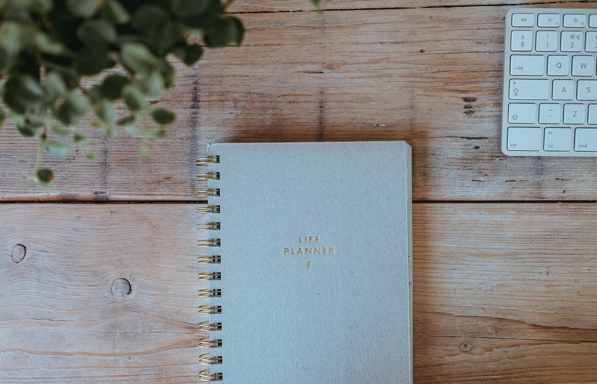 Choosing A New Planner - Sweet Humble Home