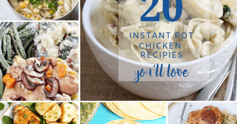 Favorite Instant Pot Chicken Recipes