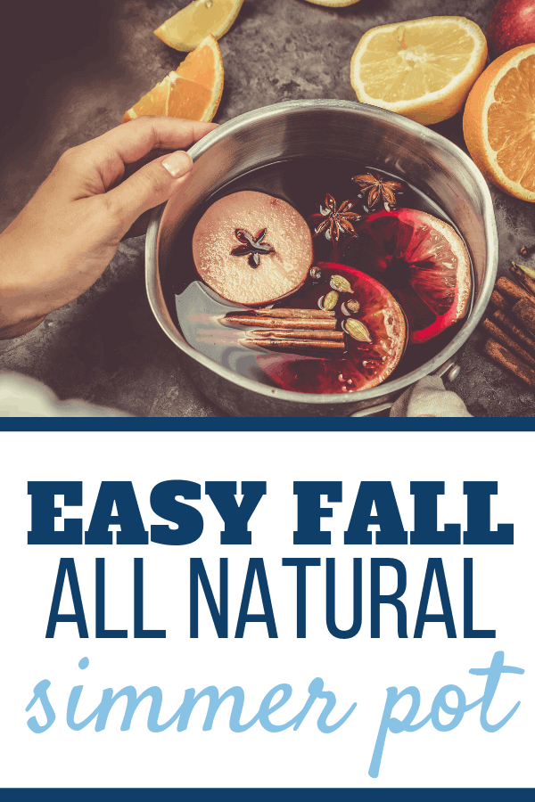 Looking for a simmer pot recipe to help the house smell like fall? I've got an easy crockpot simmer pot recipe for fall that uses apples, cinnamon, orange and more! Great for fall, Thanksgiving, Christmas - you name it! It's simple and can also be done just as easily on the stovetop! #simmerpot, #simple, #smellslikefall, #potpourri, crockpot, #fall