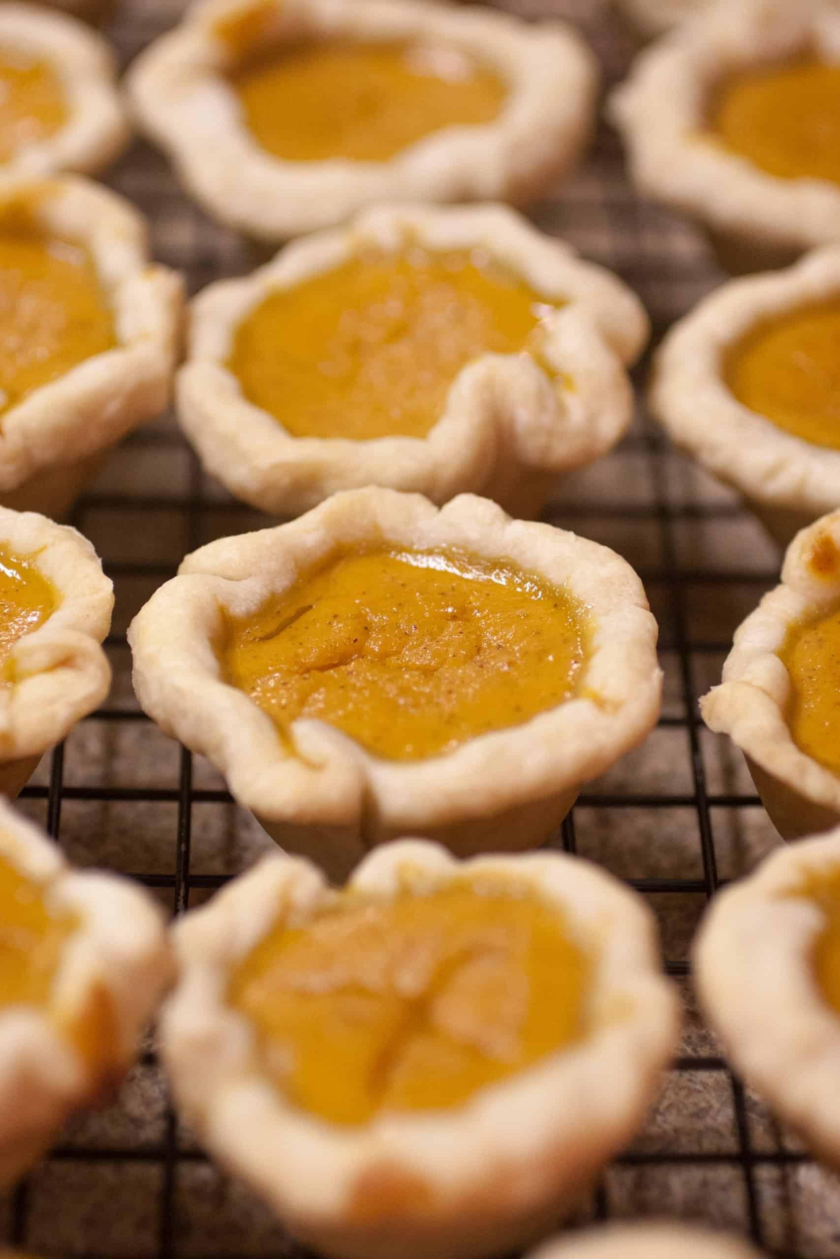 Easy Muffin Tin Mini Pumpkin Pies