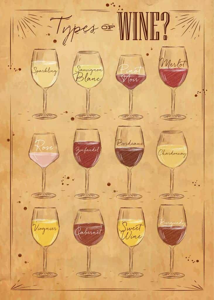 A vector showing the different types of wine glasses you would use for different types of wine.